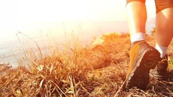 5 Steps to Wellness