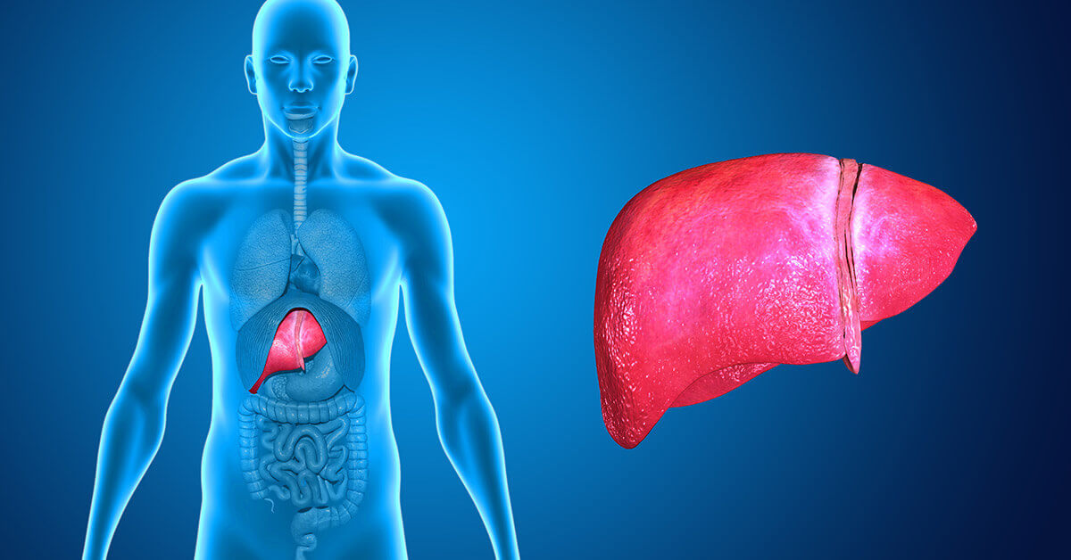 9 Ways You May Be Hurting Your Liver Without Even Knowing